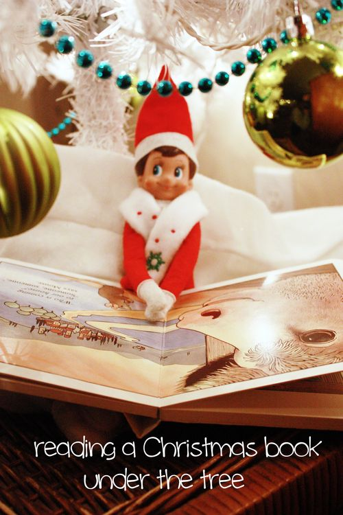 Elf reading