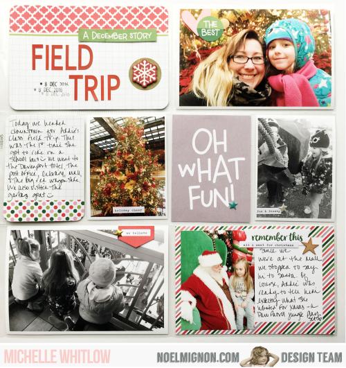Field trip 3