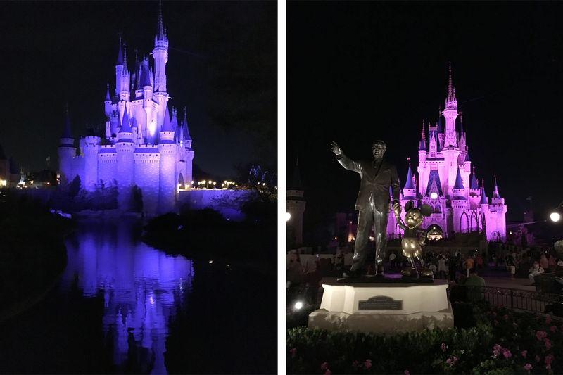 Disney2016 5